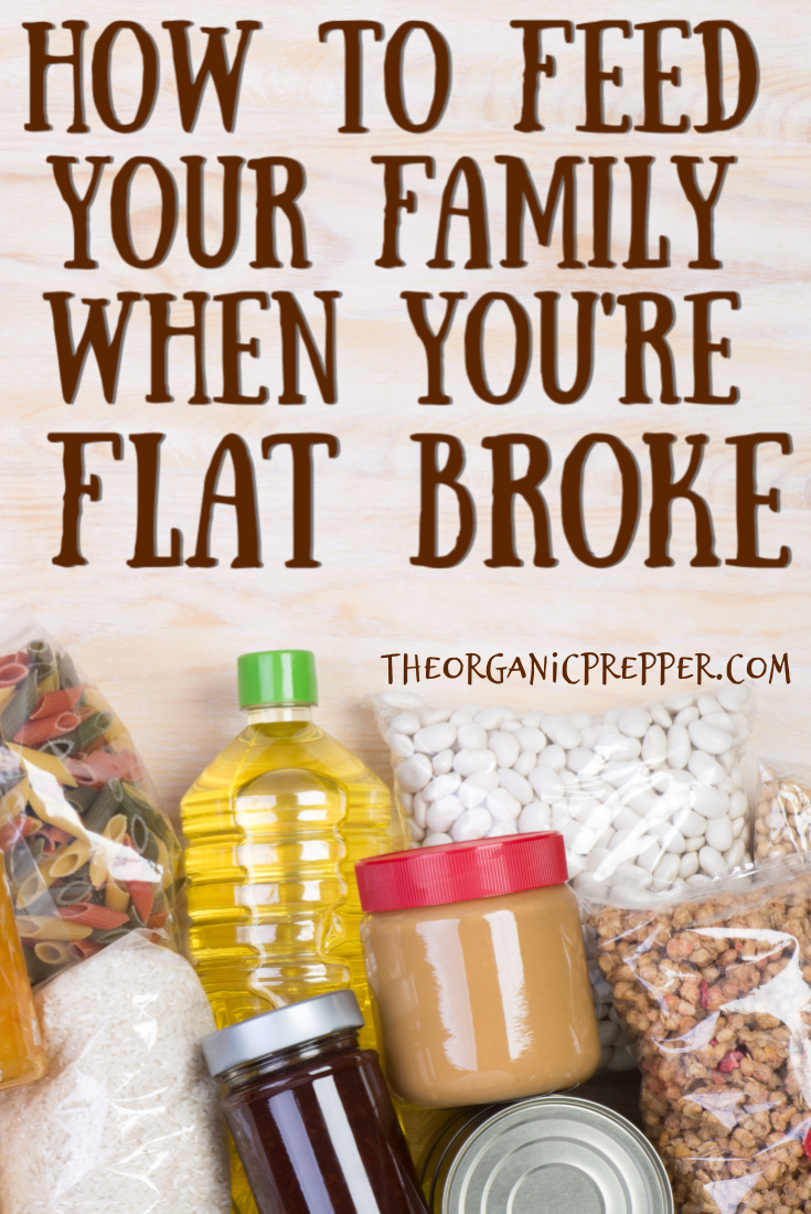 How to Feed Your Family When You\'re Flat Broke