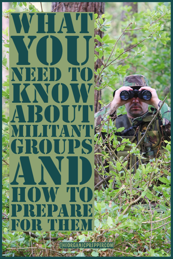 What You Need to Know About Militant Groups And How to Prepare for Them