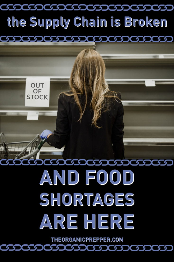 The Supply Chain Is Broken and Food Shortages Are HERE