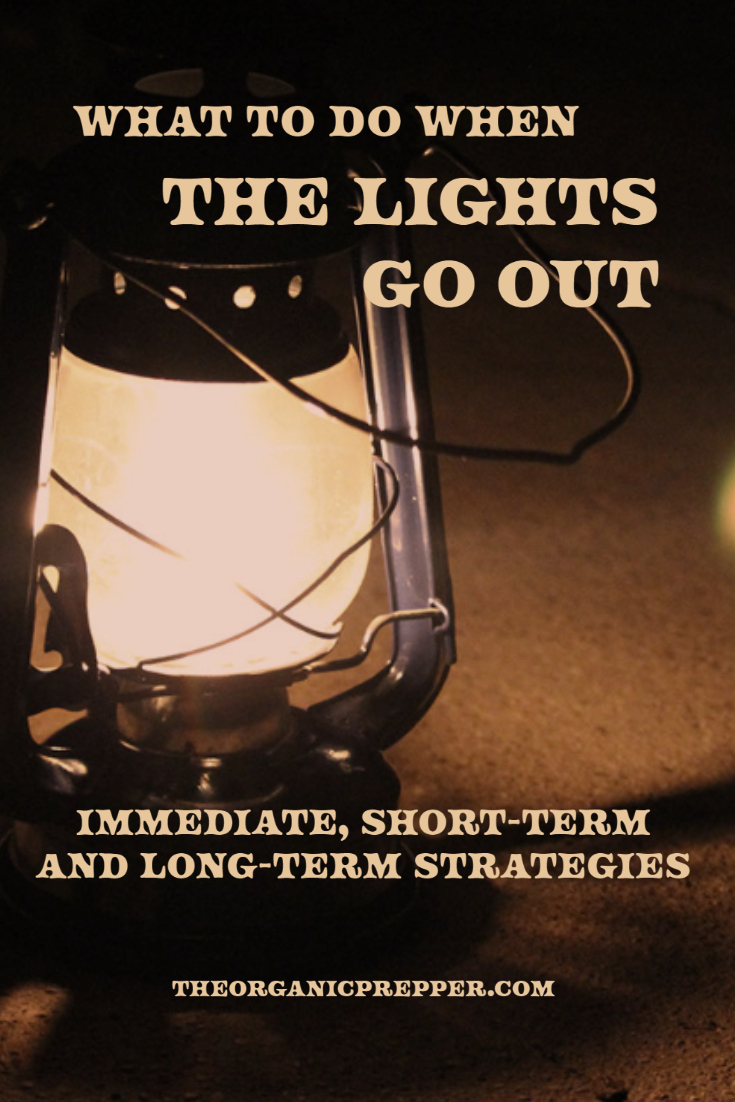 What to Do When The Lights Go Out: Immediate, Short-Term, and Long-Term Strategies