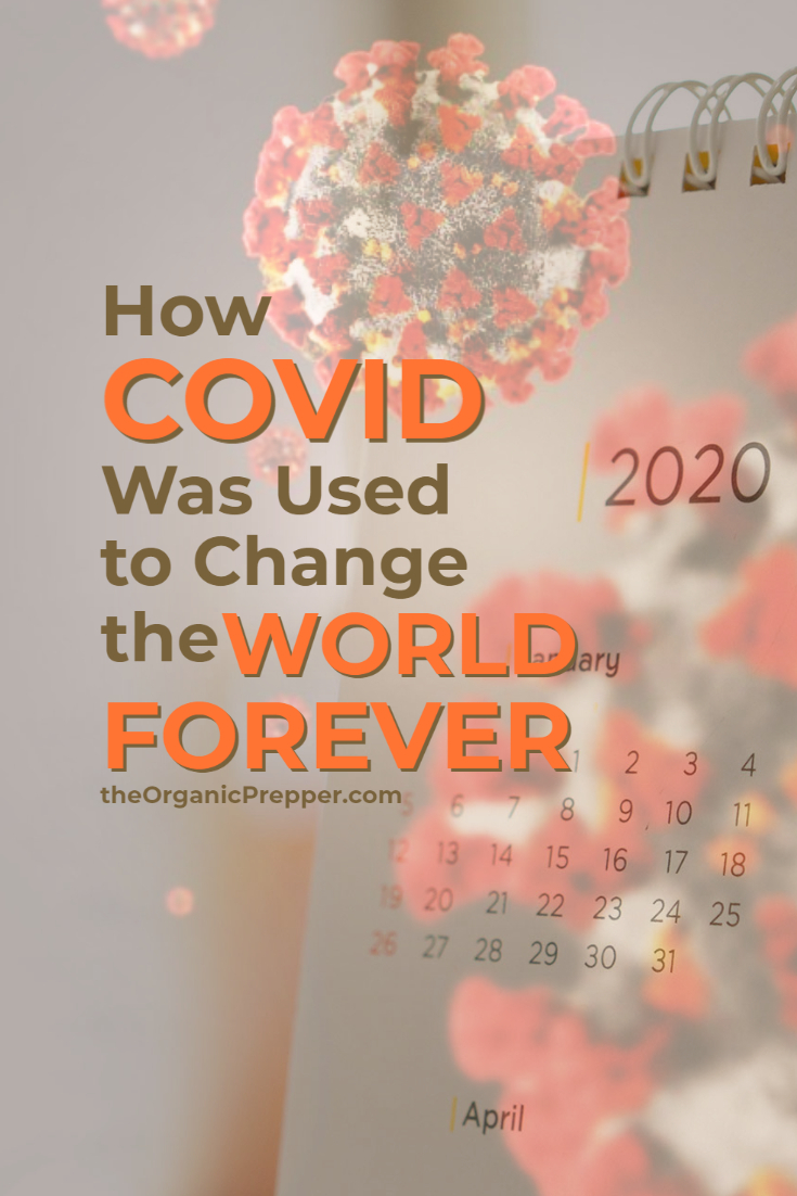 2020: How Covid Was Used to Change the World Forever