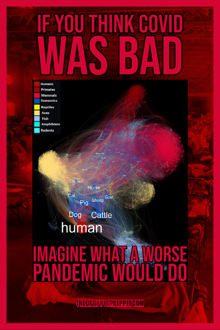 If You Think Covid Decimated Society, Imagine What a WORSE Pandemic Would Do (VIDEO)