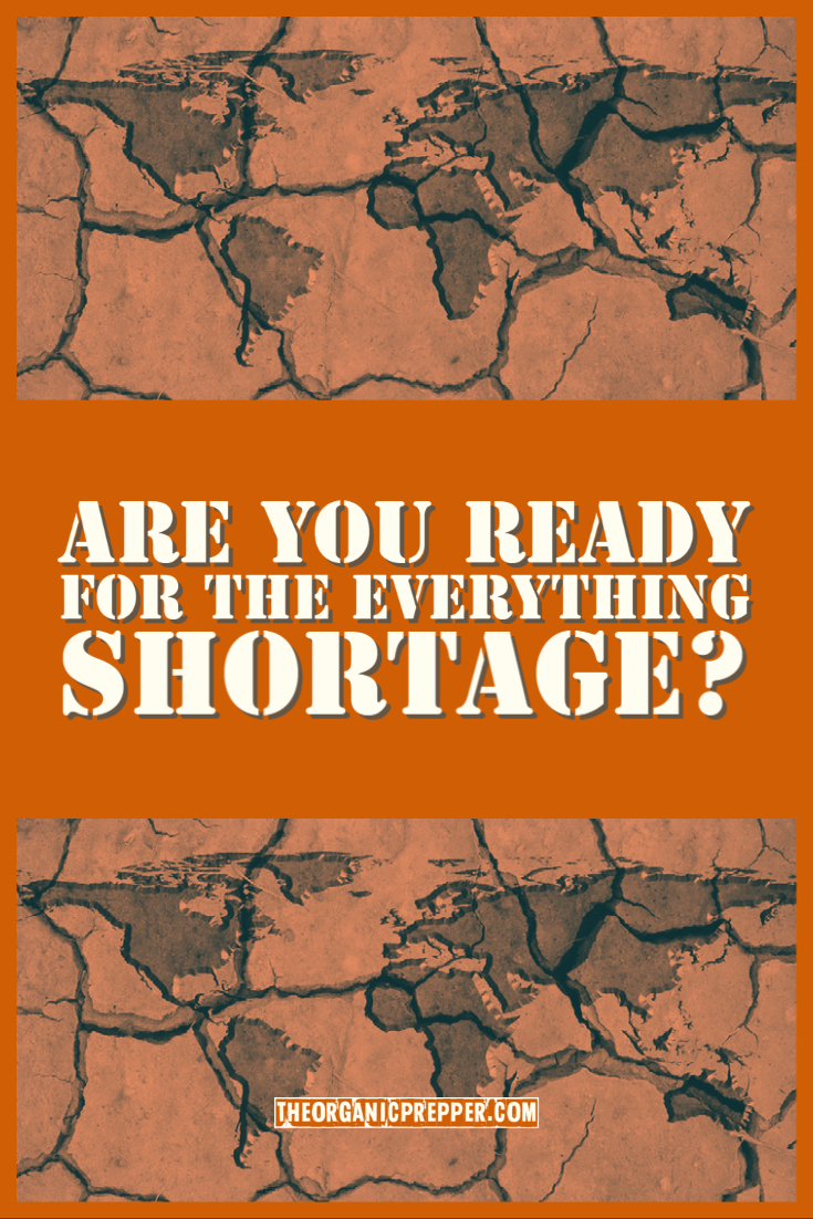 Are You Ready for the EVERYTHING Shortage?