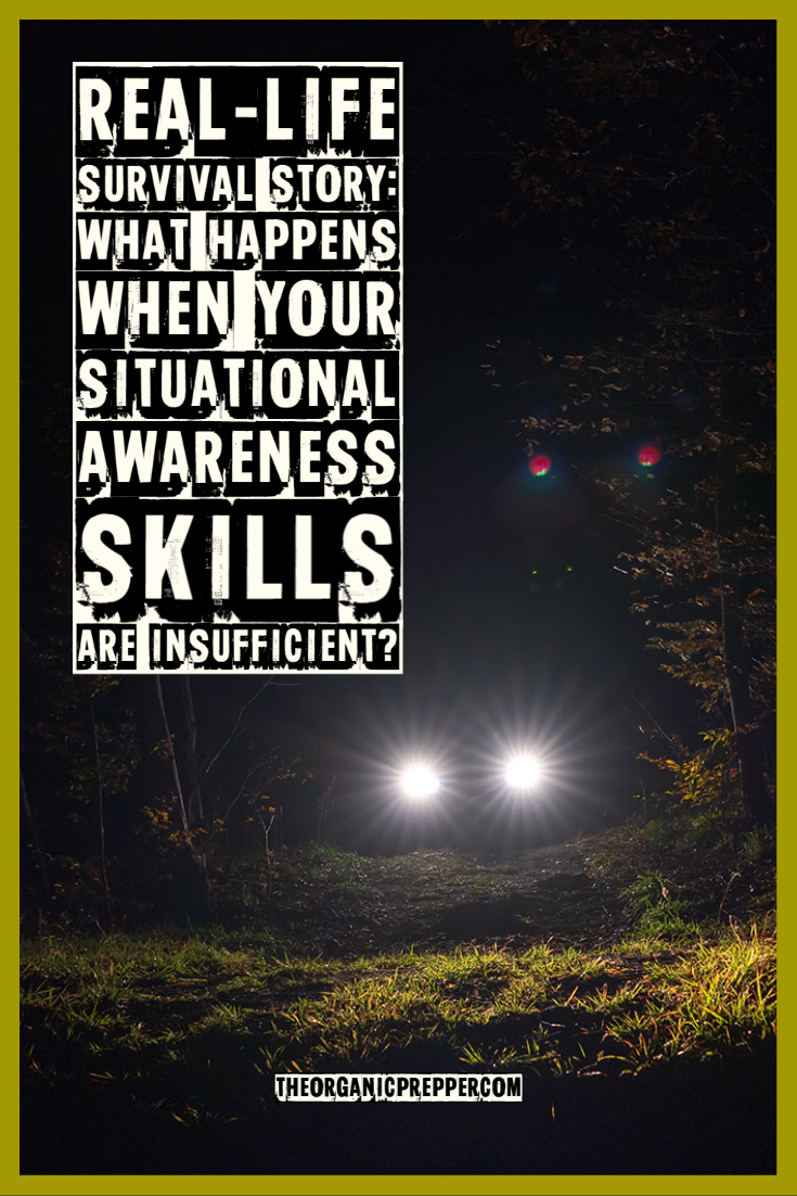 Real-Life Survival Story: What Happens When Your Situational Awareness Skills Are Insufficient?