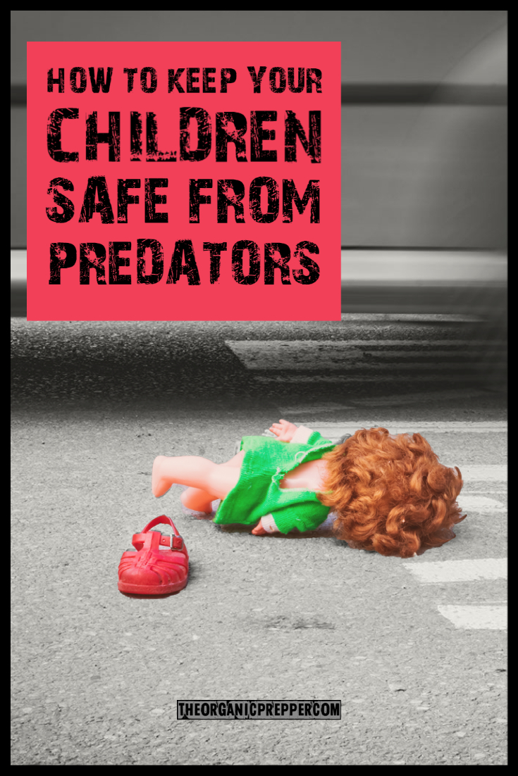 How to Keep Your Children Safe from Predators