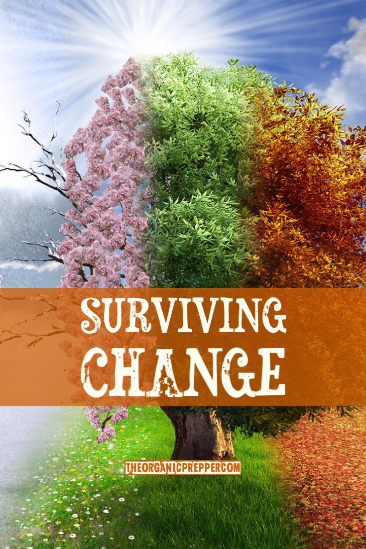 Surviving Change