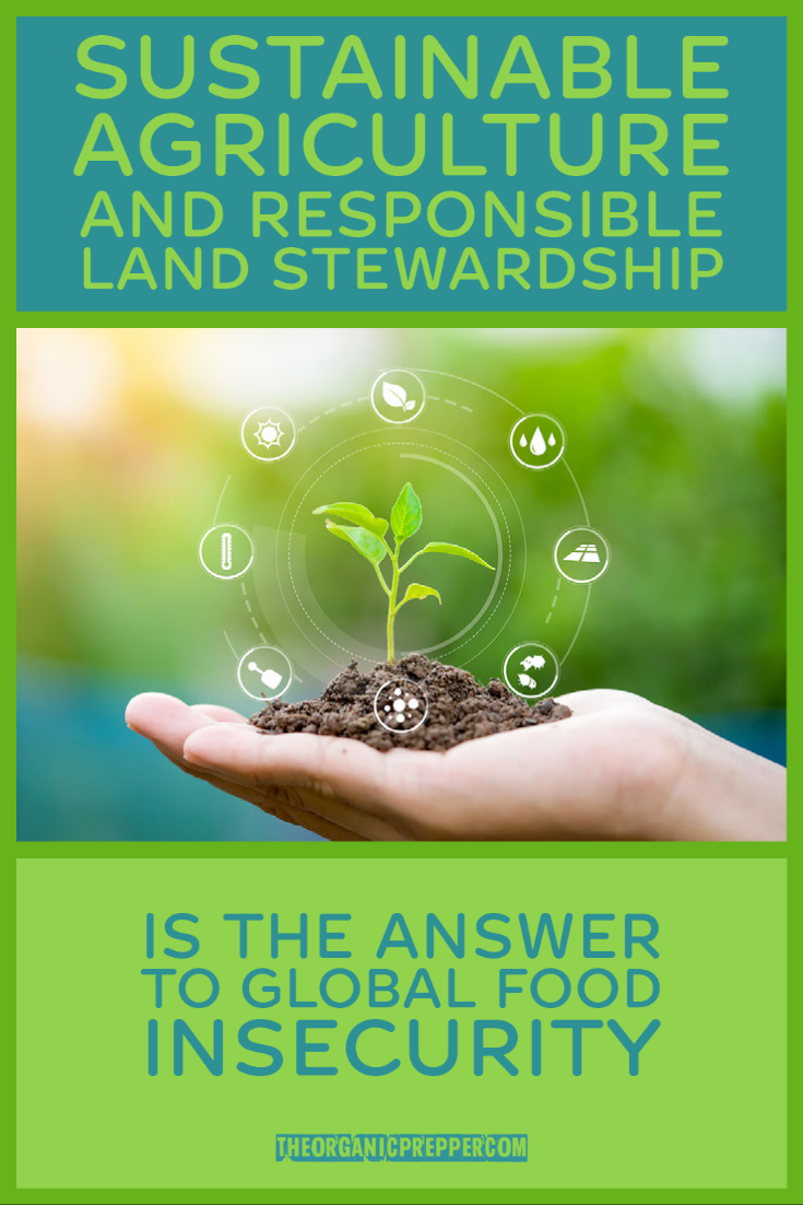 Sustainable Agriculture and Responsible Land Stewardship Is the Answer to Global Food Insecurity