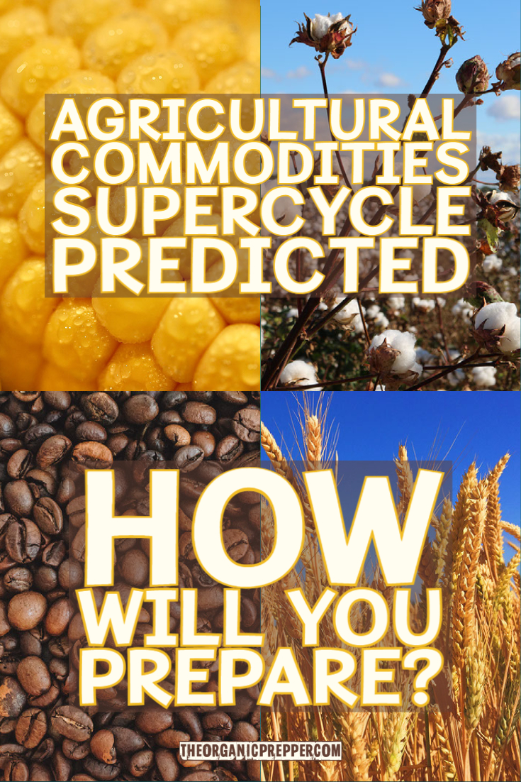 Agricultural Commodities Supercycle Predicted: How Will You Prepare?
