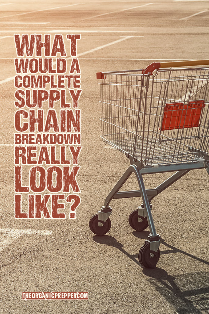 What Would a COMPLETE Supply Chain Breakdown Really Look Like?