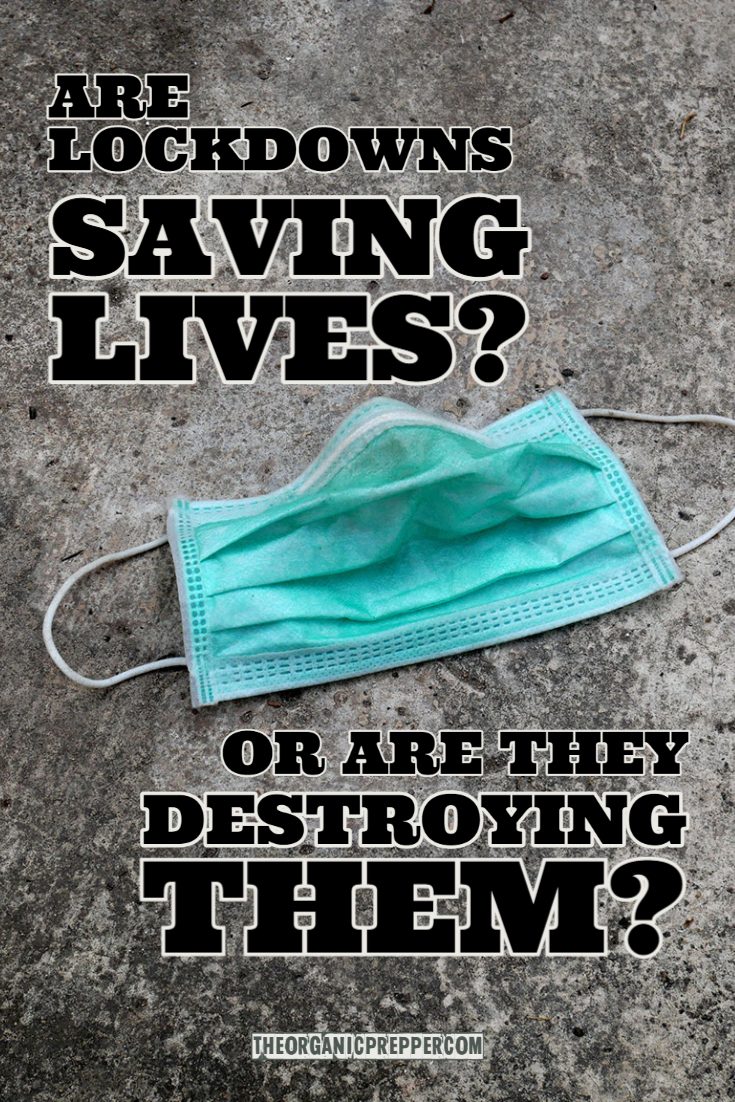 Are Lockdowns Saving Lives? Or Are They Destroying Them?