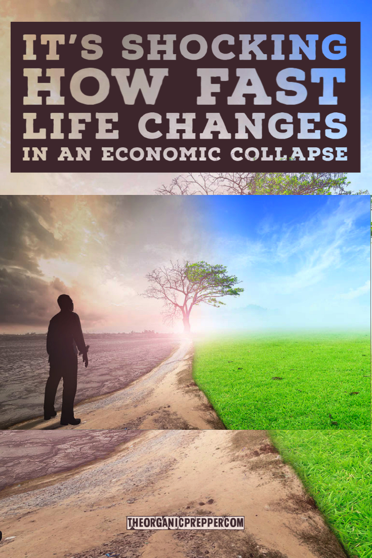 It's Shocking How Fast Life Changes in an Economic Collapse