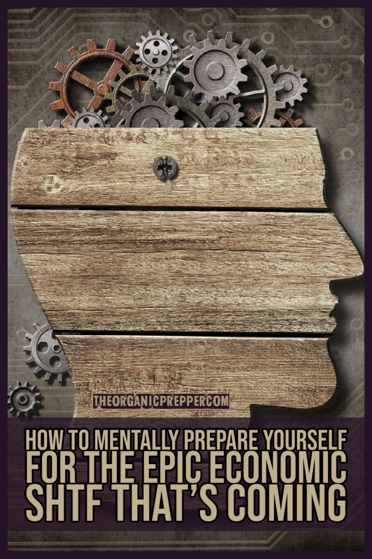 How to Mentally Prepare Yourself for the EPIC Economic SHTF That's Coming