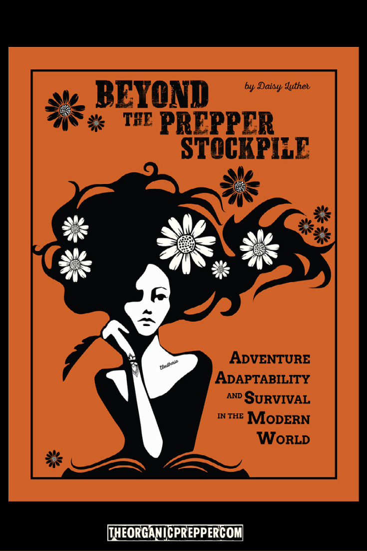 Beyond the Prepper Stockpile:  Adventure, Adaptability, and Survival in the Modern World